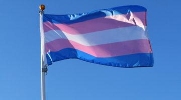 Communiqué de presse: exclusion de l'identité de genre comme motif de protection dans le Code pénal